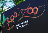 Boo at the zoo - Halloween